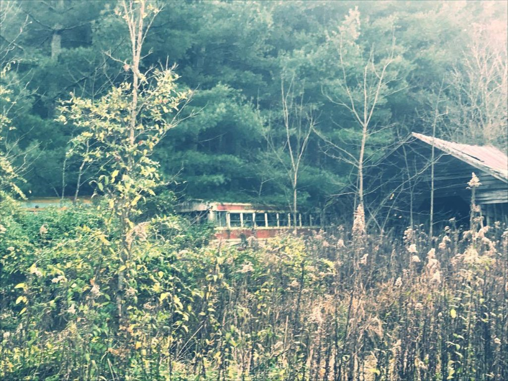 Abandoned bus in Wythe County, Virginia. Staff Photo.