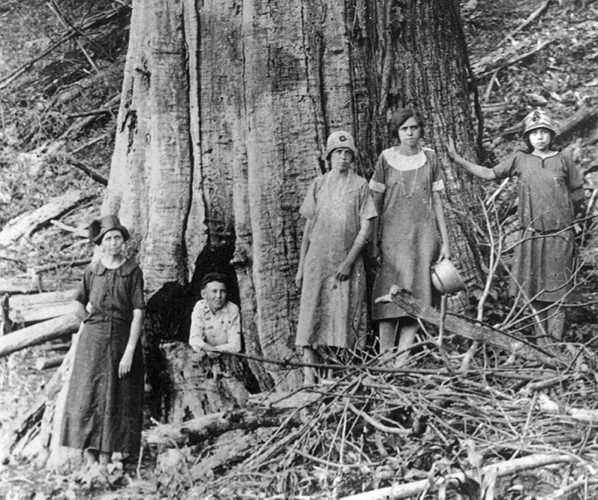 Photo: circa 1920, The Family of James and Caroline Shelton pose by a large dead Chestnut Tree in the Great Smoky Mountains National Park.